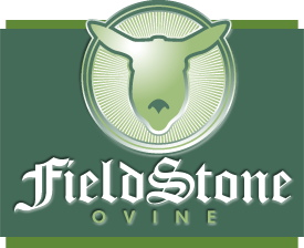 The Fieldstone Ovine logo is your assurance of breed purity and quality